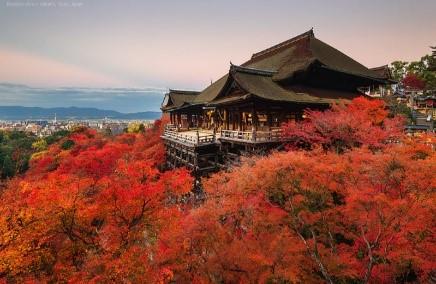 Tour du lịch Khám phá Nhật Bản 6 ngày 5 đêm