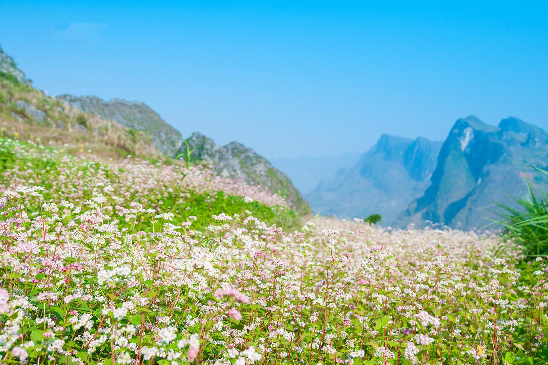 Tour Du lịch Hà Nội - Hà Giang - Cao Bằng - Bắc Kạn 6N5Đ
