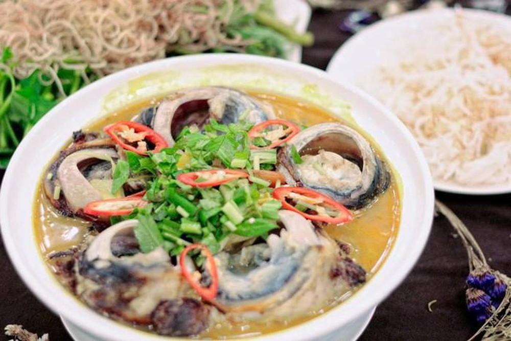 Mat Ca Ngu Dai Duong 2